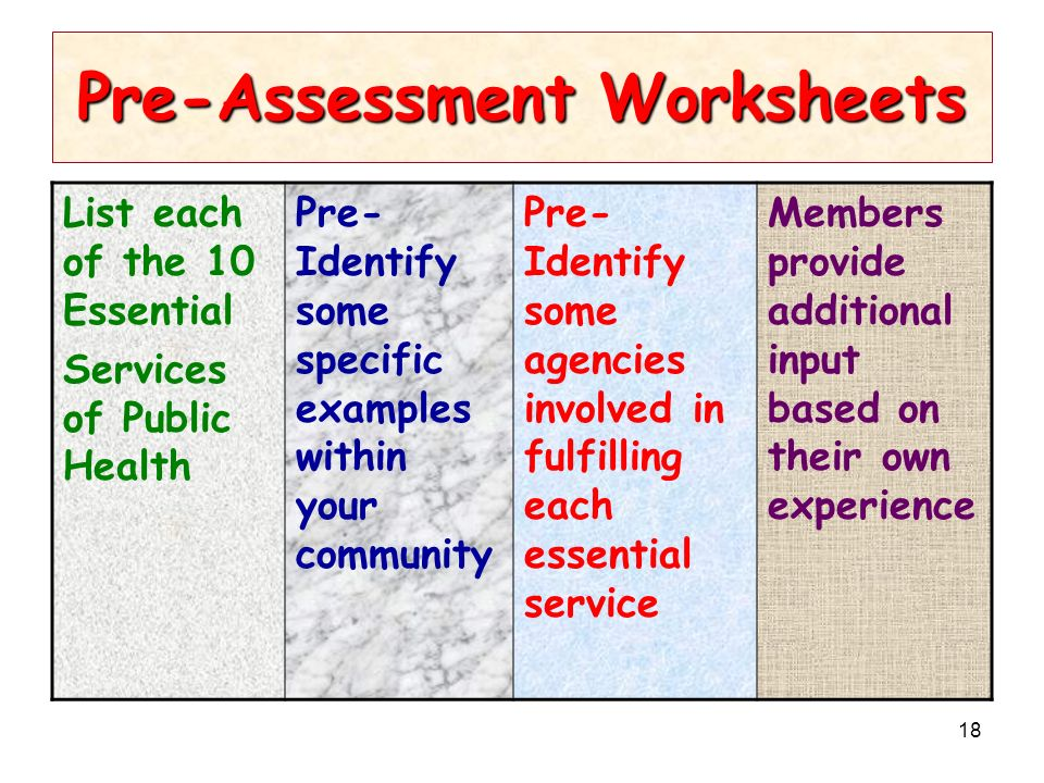 18 Pre-Assessment Worksheets List each of the 10 Essential Services of Public Health Pre- Identify some specific examples within your community Pre- Identify some agencies involved in fulfilling each essential service Members provide additional input based on their own experience