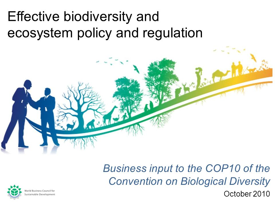 Business input to the COP10 of the Convention on Biological Diversity October 2010 Effective biodiversity and ecosystem policy and regulation
