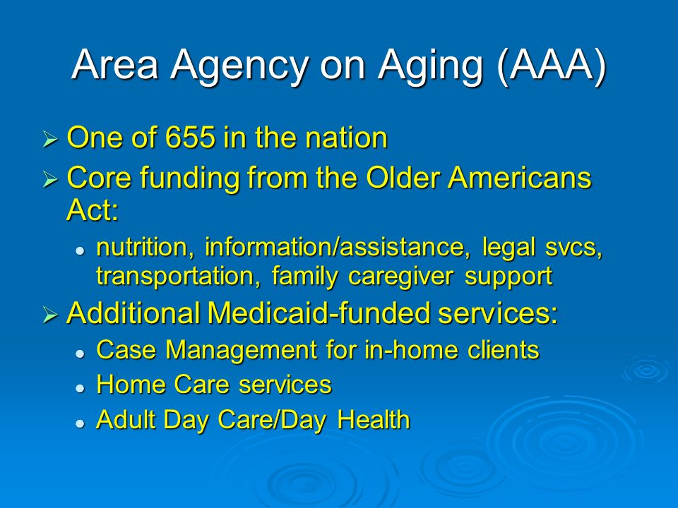 Area Agency on Aging (AAA) One of 655 in the nation One of 655 in the nation Core funding from the Older Americans Act: Core funding from the Older Americans Act: nutrition, information/assistance, legal svcs, transportation, family caregiver support nutrition, information/assistance, legal svcs, transportation, family caregiver support Additional Medicaid-funded services: Additional Medicaid-funded services: Case Management for in-home clients Case Management for in-home clients Home Care services Home Care services Adult Day Care/Day Health Adult Day Care/Day Health