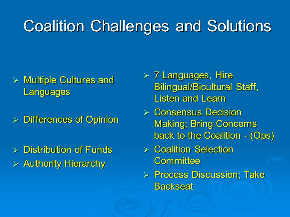 Coalition Challenges and Solutions Multiple Cultures and Languages Multiple Cultures and Languages Differences of Opinion Differences of Opinion Distribution of Funds Distribution of Funds Authority Hierarchy Authority Hierarchy 7 Languages, Hire Bilingual/Bicultural Staff, Listen and Learn 7 Languages, Hire Bilingual/Bicultural Staff, Listen and Learn Consensus Decision Making; Bring Concerns back to the Coalition - (Ops) Consensus Decision Making; Bring Concerns back to the Coalition - (Ops) Coalition Selection Committee Coalition Selection Committee Process Discussion; Take Backseat Process Discussion; Take Backseat
