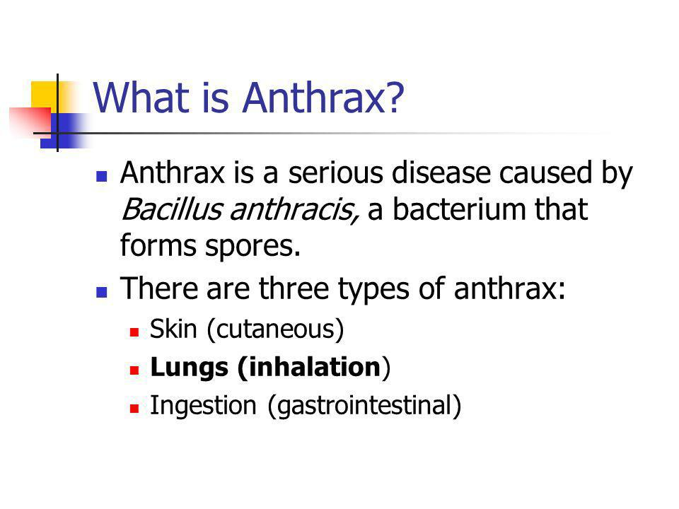 What is Anthrax.