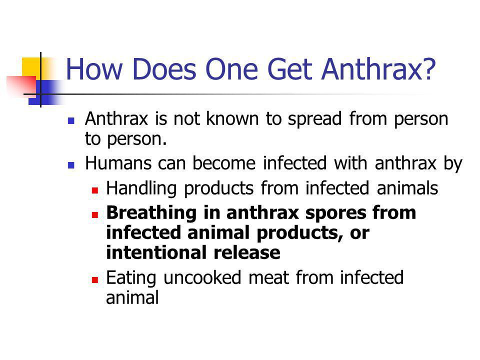 How Does One Get Anthrax. Anthrax is not known to spread from person to person.