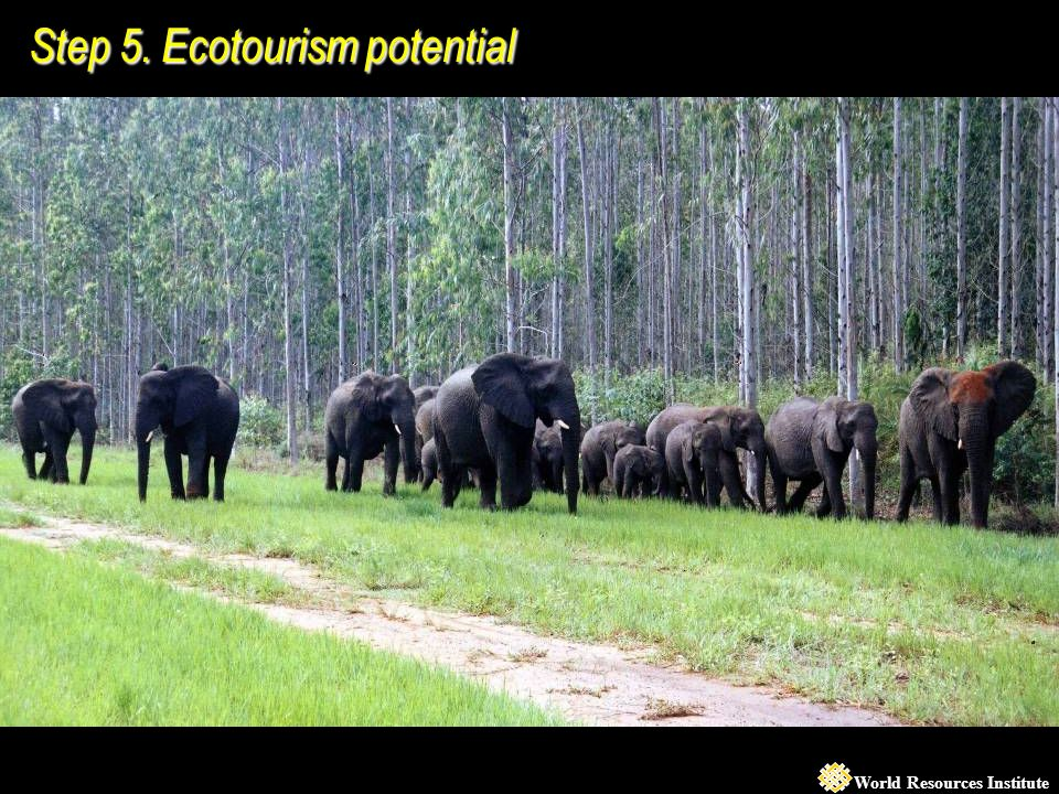 World Resources Institute Step 5. Ecotourism potential