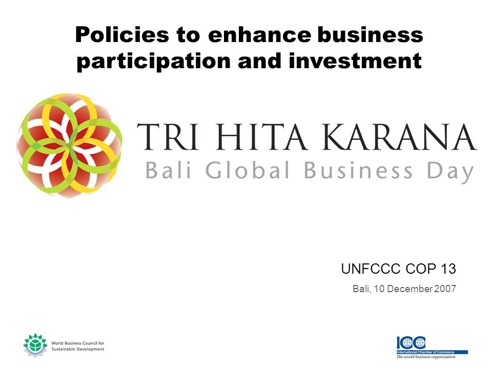 UNFCCC COP 13 Bali, 10 December 2007 Policies to enhance business participation and investment