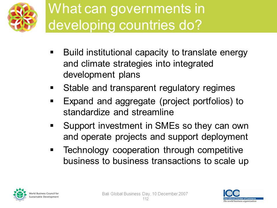 What can governments in developing countries do.