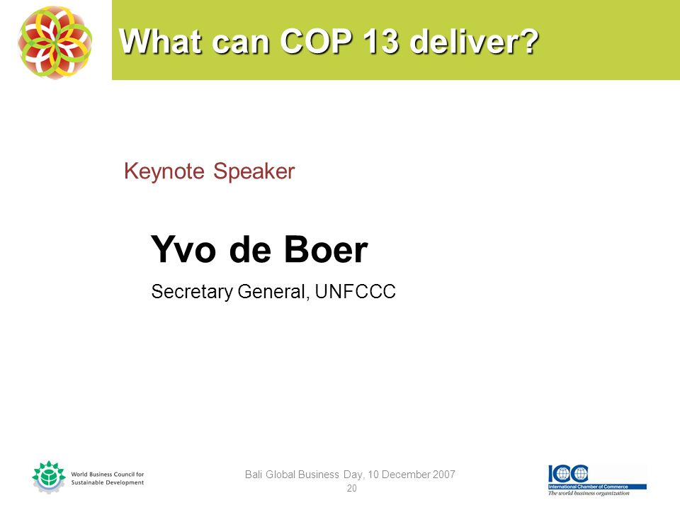 What can COP 13 deliver.