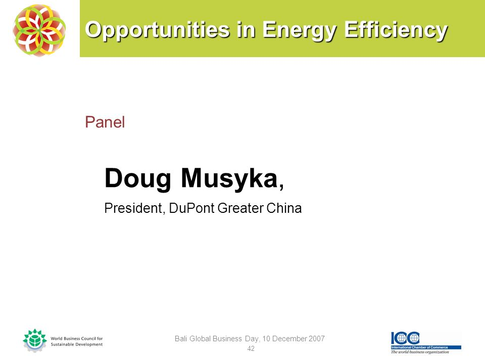 Opportunities in Energy Efficiency Panel Doug Musyka, President, DuPont Greater China Bali Global Business Day, 10 December 2007 42