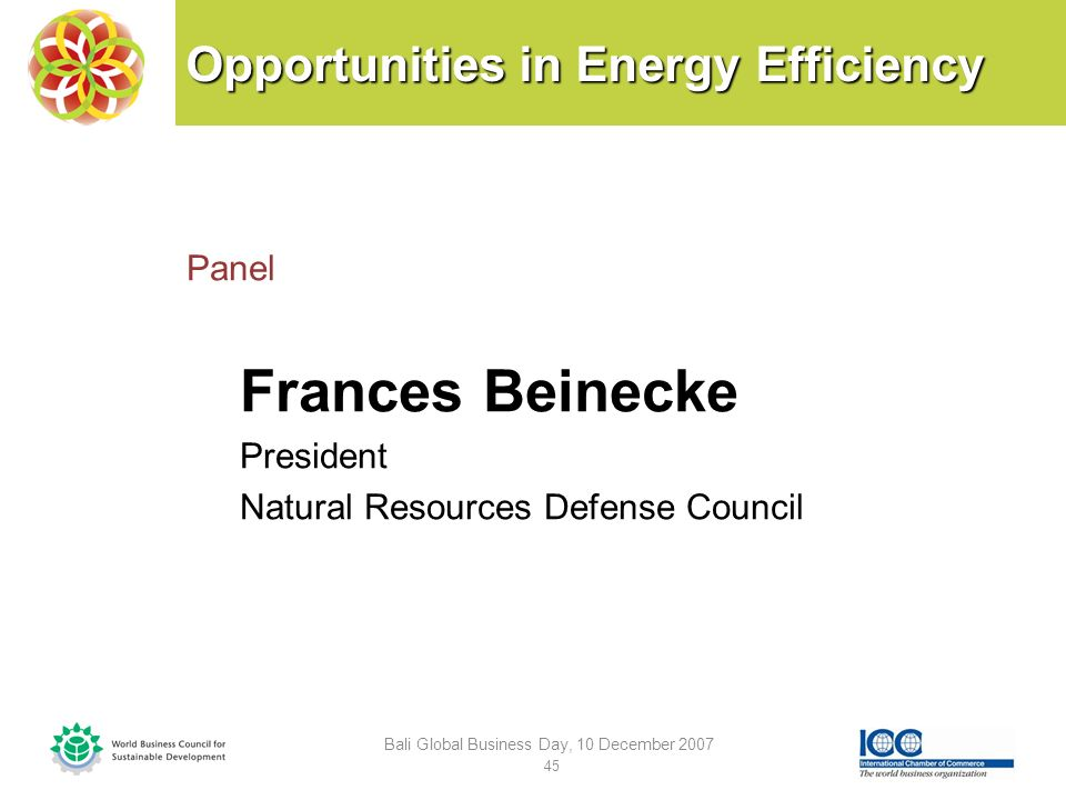 Opportunities in Energy Efficiency Panel Frances Beinecke President Natural Resources Defense Council Bali Global Business Day, 10 December 2007 45