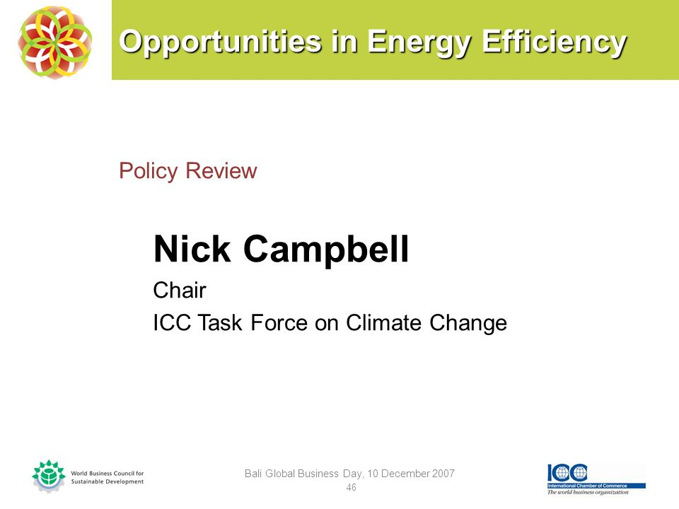 Opportunities in Energy Efficiency Policy Review Nick Campbell Chair ICC Task Force on Climate Change Bali Global Business Day, 10 December 2007 46