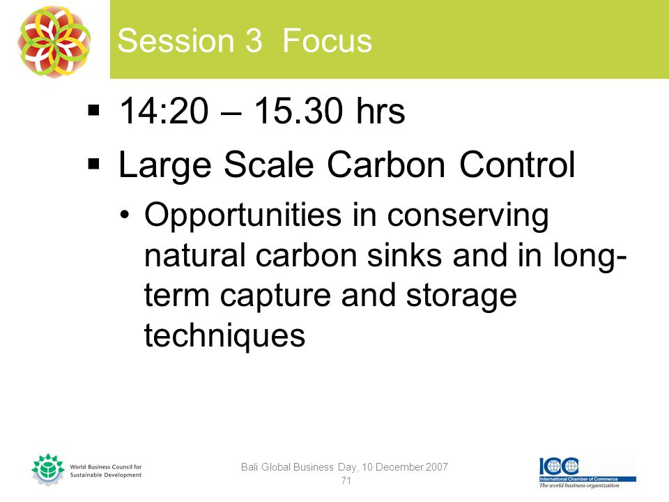 Session 3 Focus 14:20 – 15.30 hrs Large Scale Carbon Control Opportunities in conserving natural carbon sinks and in long- term capture and storage techniques Bali Global Business Day, 10 December 2007 71