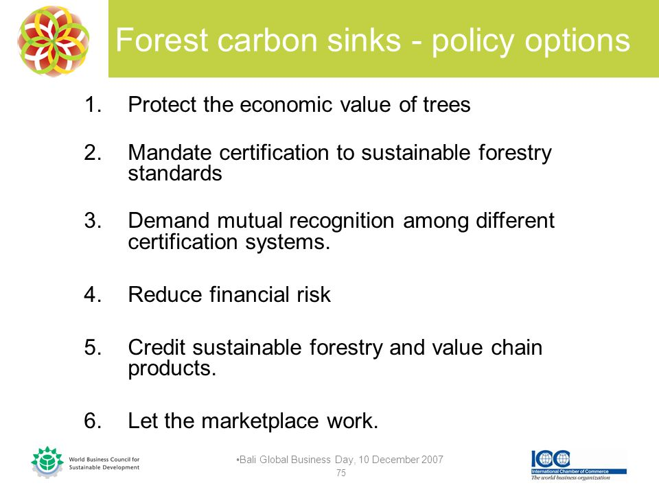 Forest carbon sinks - policy options 1.Protect the economic value of trees 2.Mandate certification to sustainable forestry standards 3.Demand mutual recognition among different certification systems.