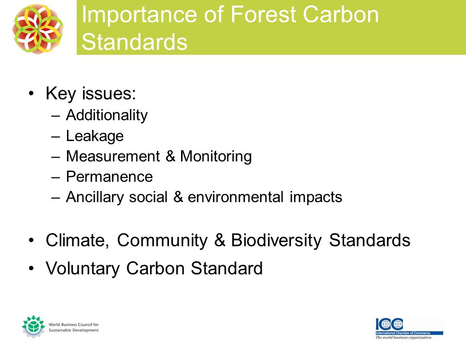 Key issues: –Additionality –Leakage –Measurement & Monitoring –Permanence –Ancillary social & environmental impacts Climate, Community & Biodiversity Standards Voluntary Carbon Standard Importance of Forest Carbon Standards
