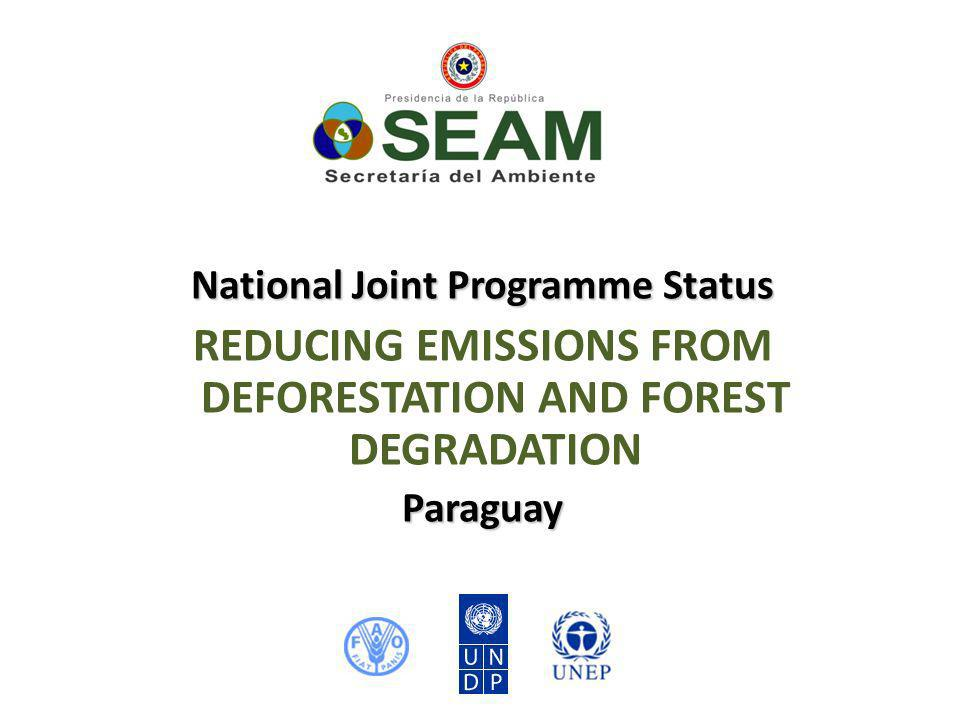 National Joint Programme Status REDUCING EMISSIONS FROM DEFORESTATION AND FOREST DEGRADATIONParaguay