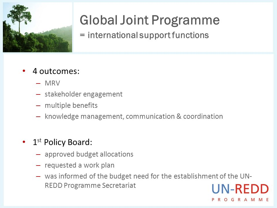 Global Joint Programme = international support functions 4 outcomes: – MRV – stakeholder engagement – multiple benefits – knowledge management, communication & coordination 1 st Policy Board: – approved budget allocations – requested a work plan – was informed of the budget need for the establishment of the UN- REDD Programme Secretariat