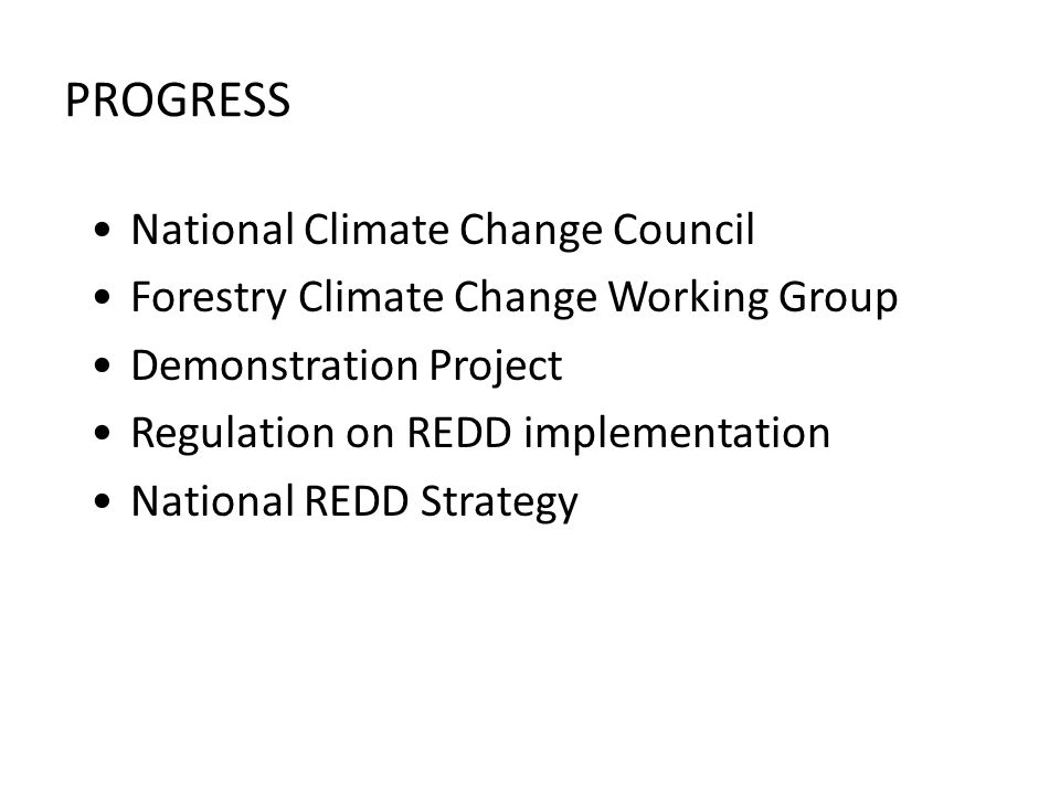 PROGRESS National Climate Change Council Forestry Climate Change Working Group Demonstration Project Regulation on REDD implementation National REDD Strategy