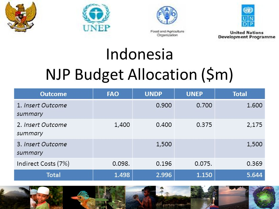 Indonesia NJP Budget Allocation ($m) OutcomeFAOUNDPUNEPTotal 1.