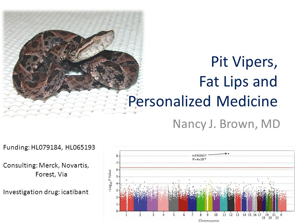Pit Vipers, Fat Lips and Personalized Medicine Nancy J.