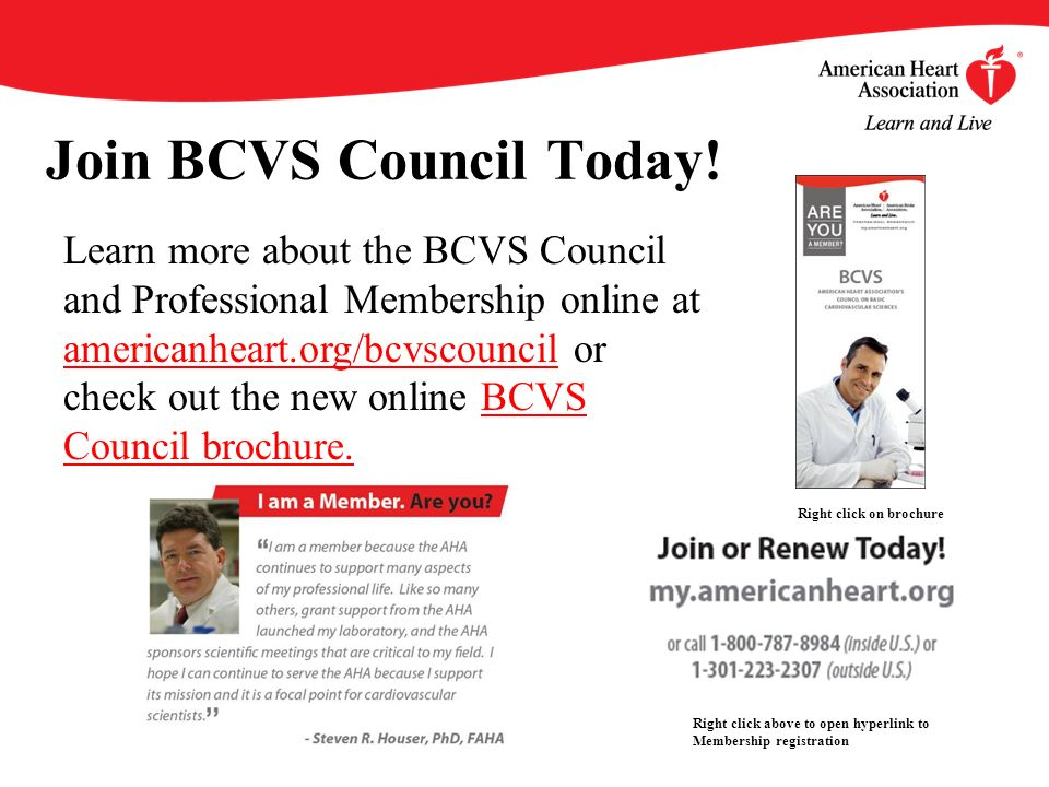 Join BCVS Council Today.