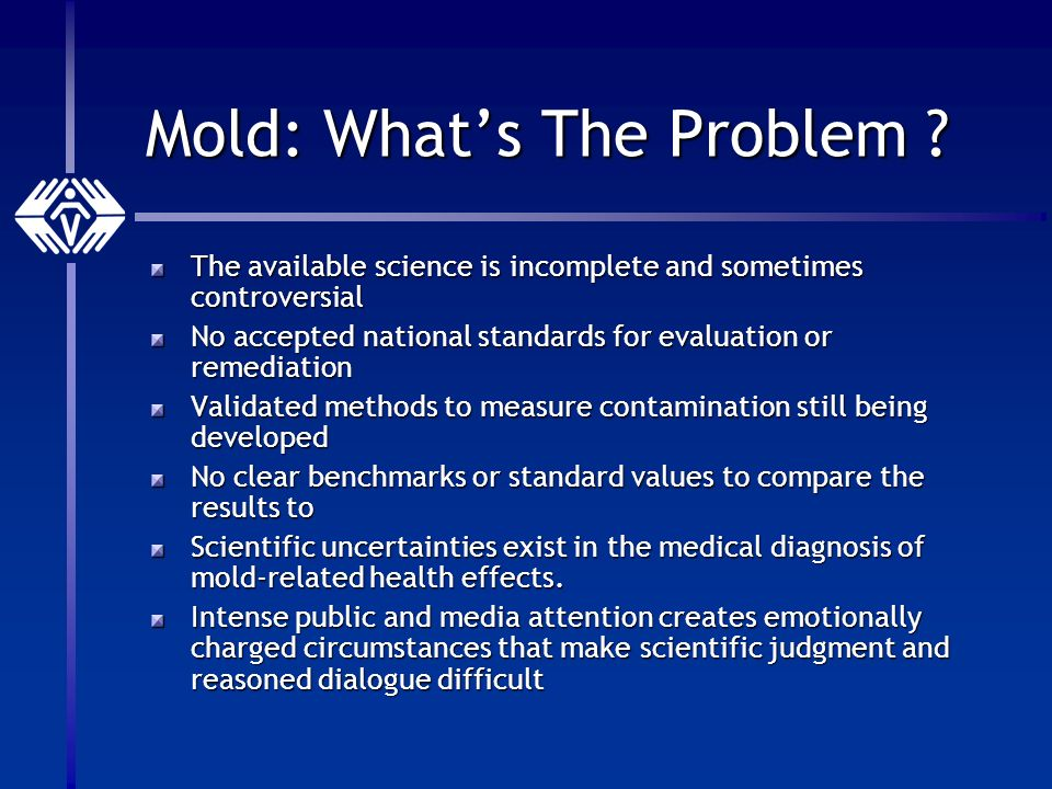 Mold: Whats The Problem .