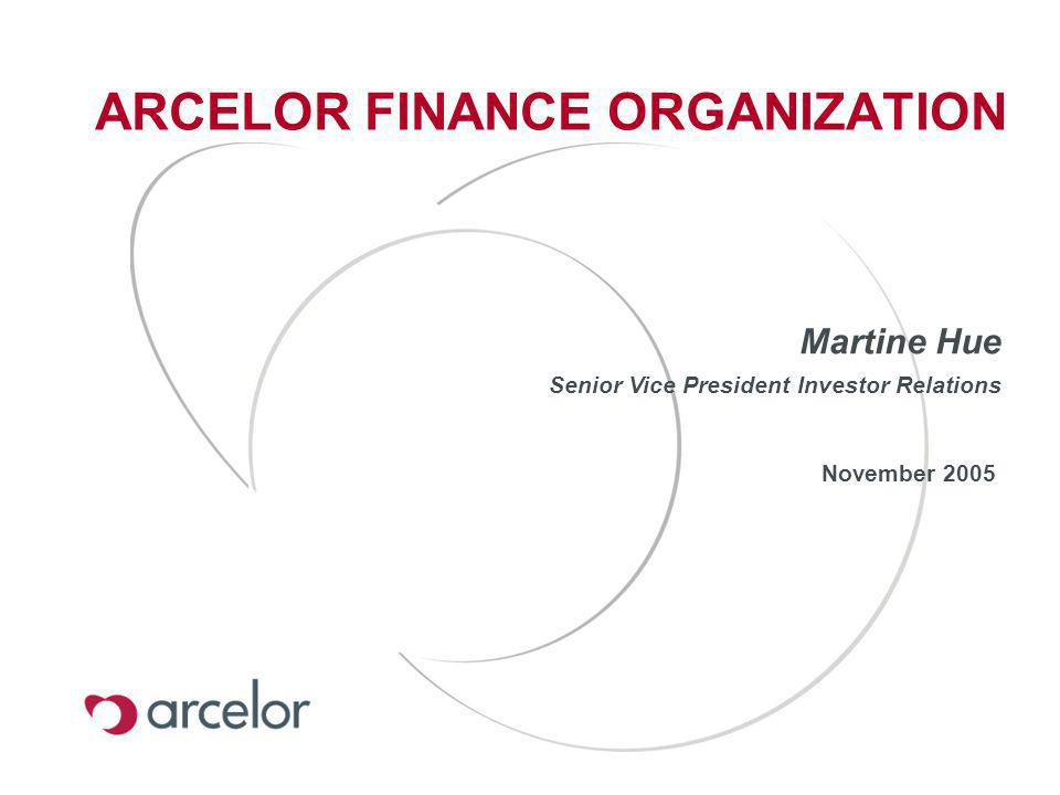 ARCELOR FINANCE ORGANIZATION November 2005 Martine Hue Senior Vice President Investor Relations