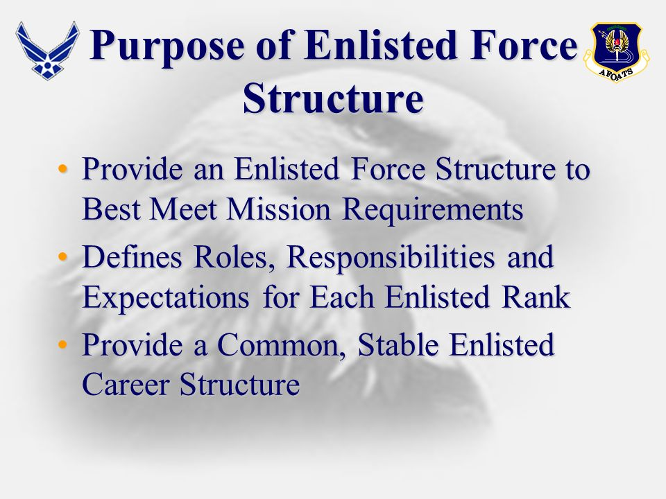 The Enlisted Force Structure PhilosophyPhilosophy Provide Consistent, Well-defined ExpectationsProvide Consistent, Well-defined Expectations and Standards and Standards Opportunity for Growth for All AirmenOpportunity for Growth for All Airmen Reflect Air Force Core ValuesReflect Air Force Core Values