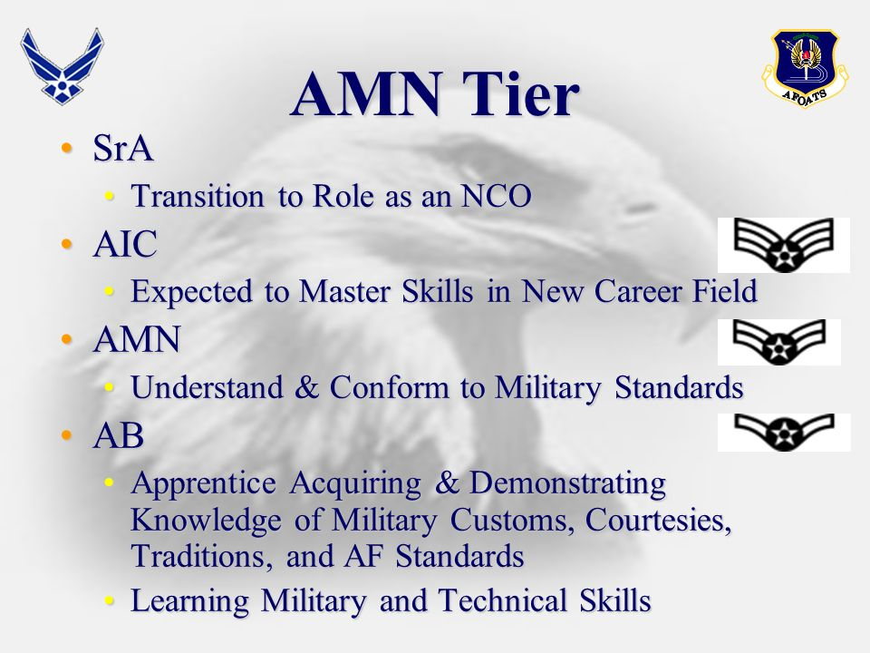 NCO Tier TSgtTSgt Organizational Technical ExpertsOrganizational Technical Experts Provide Sound Supervision and TrainingProvide Sound Supervision and Training SSgtSSgt Highly Skilled TechniciansHighly Skilled Technicians Supervisory and Training ResponsibilitiesSupervisory and Training Responsibilities Develop Supervisory CompetenceDevelop Supervisory Competence