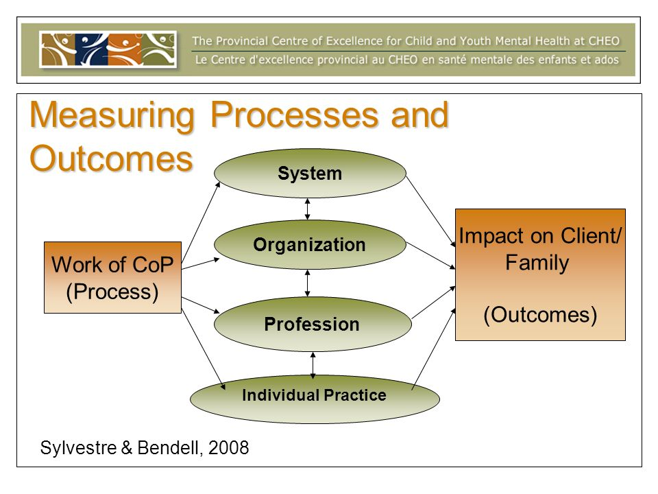 Measuring Processes and Outcomes System Individual Practice Organization Profession Work of CoP (Process) Impact on Client/ Family (Outcomes) Sylvestre & Bendell, 2008