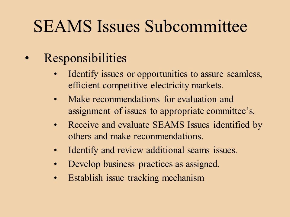 SEAMS Issues Subcommittee Responsibilities Identify issues or opportunities to assure seamless, efficient competitive electricity markets.