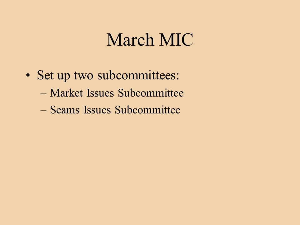 March MIC Set up two subcommittees: –Market Issues Subcommittee –Seams Issues Subcommittee