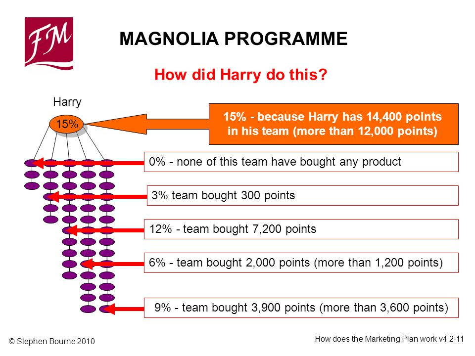 © Stephen Bourne 2010 How does the Marketing Plan work v Harry 15% 12% - team bought 7,200 points6% - team bought 2,000 points (more than 1,200 points)9% - team bought 3,900 points (more than 3,600 points) 15% - because Harry has 14,400 points in his team (more than 12,000 points) 3% team bought 300 points MAGNOLIA PROGRAMME How did Harry do this.