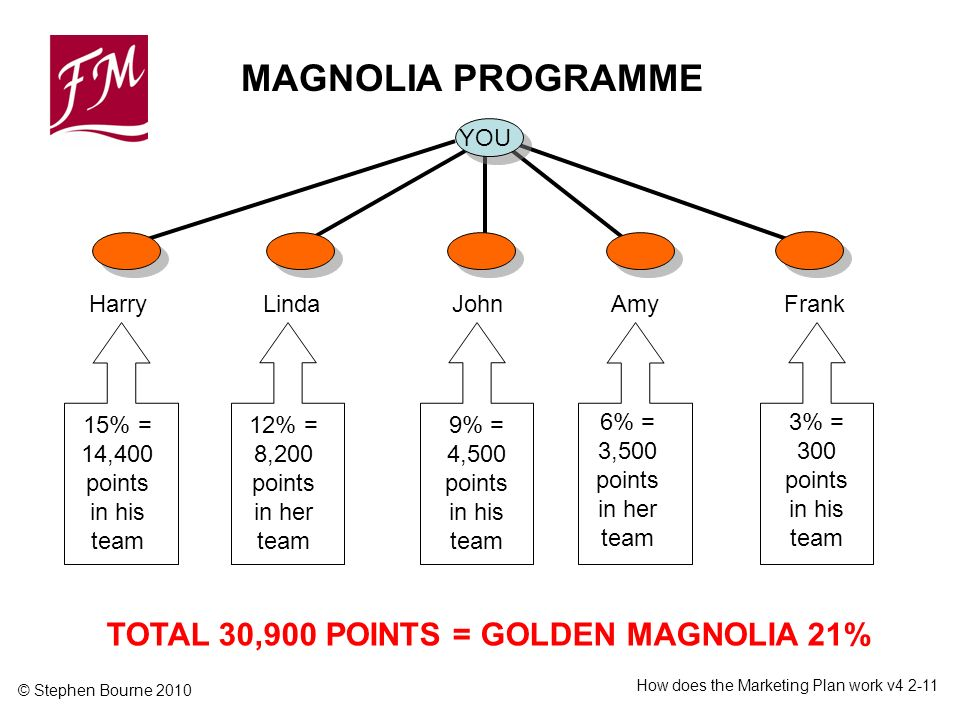 © Stephen Bourne 2010 How does the Marketing Plan work v % = 14,400 points in his team TOTAL 30,900 POINTS = GOLDEN MAGNOLIA 21% YOU HarryLindaJohn Frank Amy 12% = 8,200 points in her team 9% = 4,500 points in his team 6% = 3,500 points in her team 3% = 300 points in his team MAGNOLIA PROGRAMME
