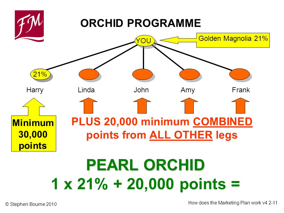 © Stephen Bourne 2010 How does the Marketing Plan work v Minimum 30,000 points PEARL ORCHID PEARL ORCHID 1 x 21% + 20,000 points = Harry ORCHID PROGRAMME YOU Golden Magnolia 21% LindaJohnAmyFrank PLUS 20,000 minimum COMBINED points from ALL OTHER legs 21%