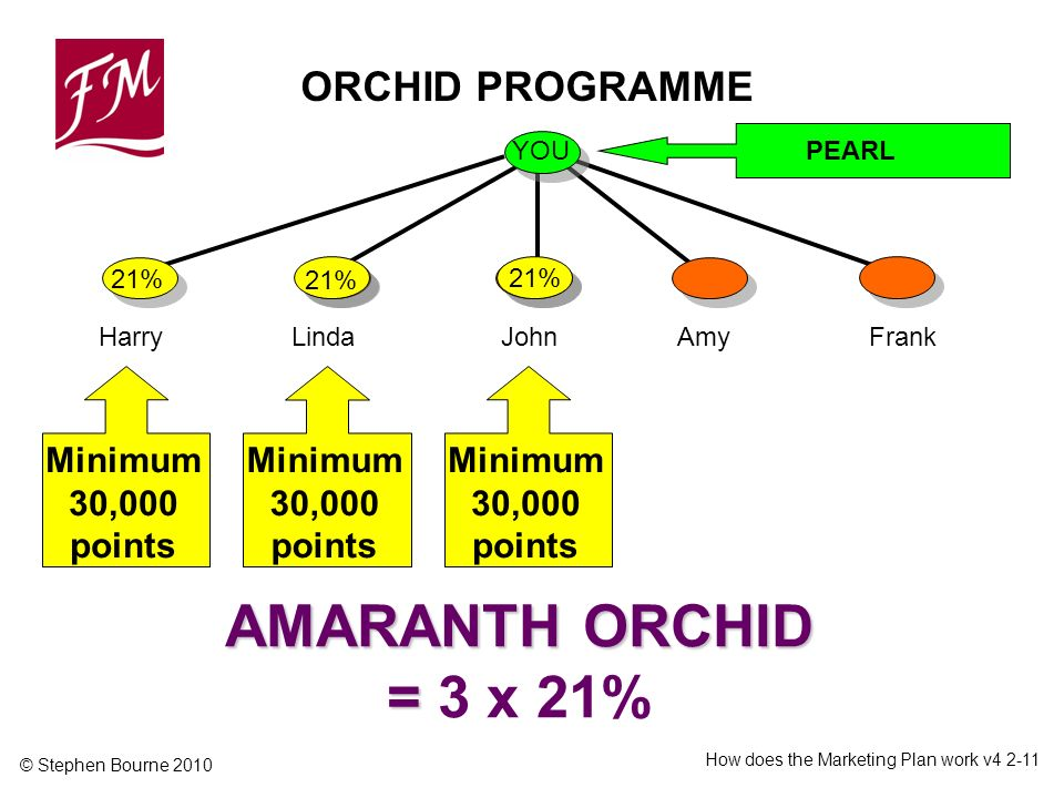 © Stephen Bourne 2010 How does the Marketing Plan work v ORCHID PROGRAMME YOU PEARL HarryLindaJohnFrankAmy 21% Minimum 30,000 points AMARANTH ORCHID = AMARANTH ORCHID = 3 x 21% Minimum 30,000 points 21%