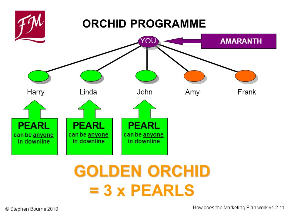 © Stephen Bourne 2010 How does the Marketing Plan work v GOLDEN ORCHID = GOLDEN ORCHID = 3 x PEARLS ORCHID PROGRAMME YOU AMARANTH HarryLindaJohnFrankAmy 21% Minimum 30,000 points PEARL can be anyone in downline
