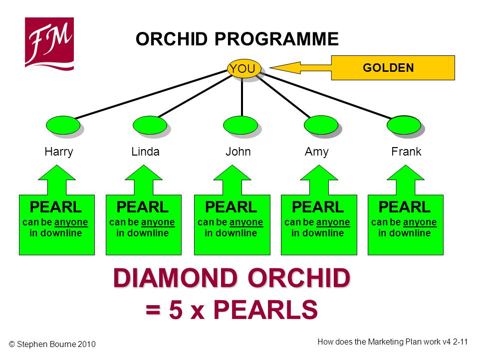 © Stephen Bourne 2010 How does the Marketing Plan work v ORCHID PROGRAMME YOU GOLDEN HarryLindaJohnFrankAmy PEARL can be anyone in downline DIAMOND ORCHID = DIAMOND ORCHID = 5 x PEARLS PEARL can be anyone in downline