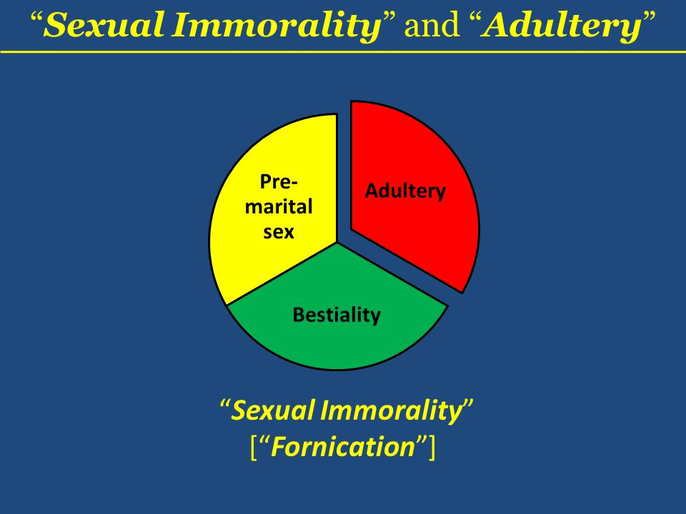 Sexual Immorality and Adultery Adultery Bestiality Pre- marital sex Sexual Immorality [Fornication]