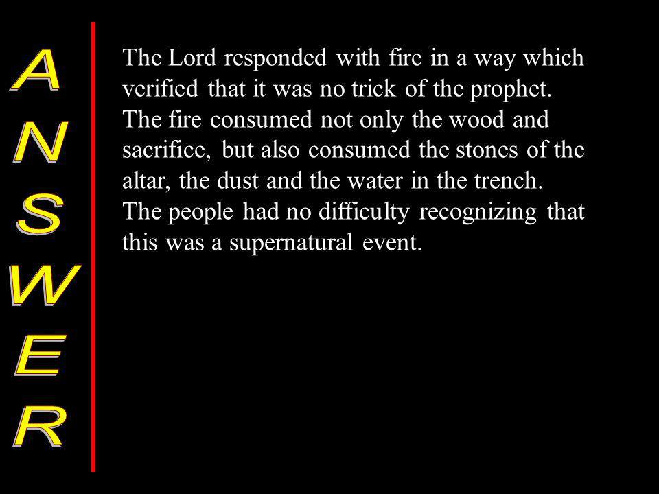 The Lord responded with fire in a way which verified that it was no trick of the prophet.