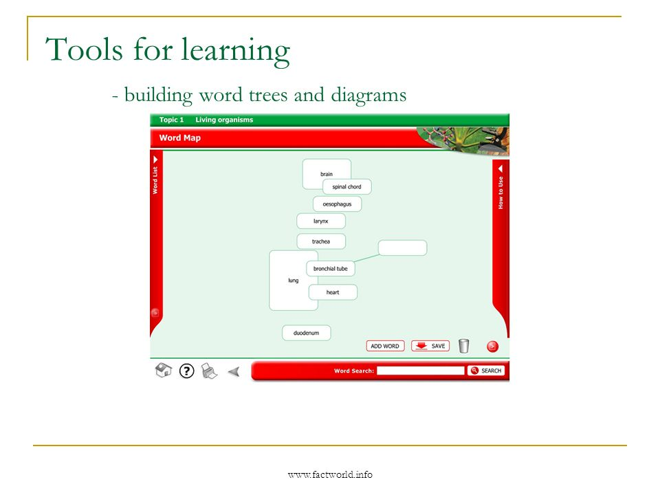 www.factworld.info Tools for learning - building word trees and diagrams