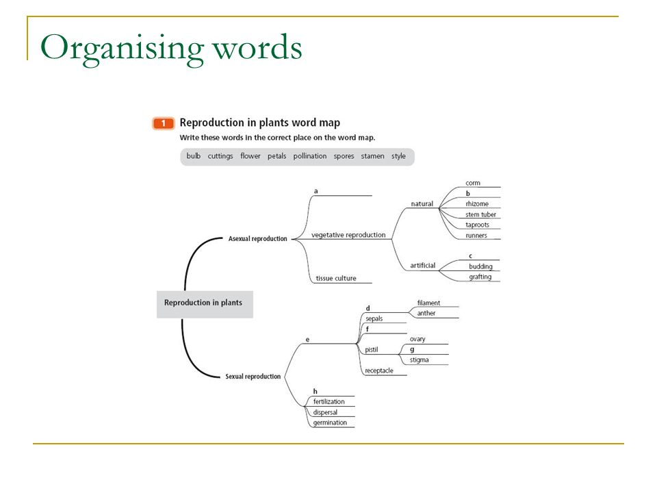 Organising words