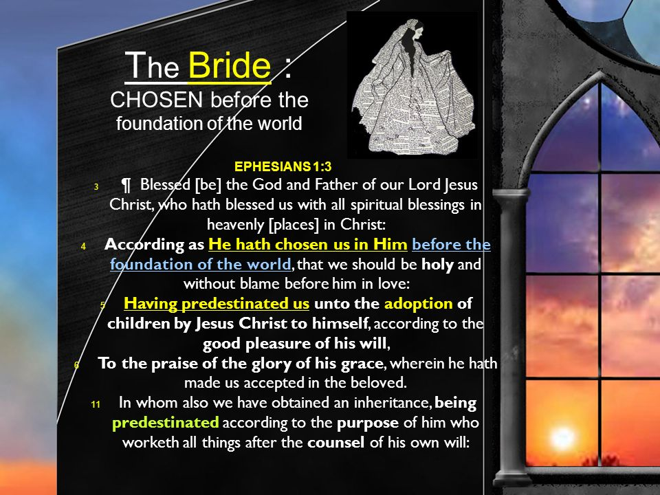 T he Bride : CHOSEN before the foundation of the world EPHESIANS 1:3 3 ¶ Blessed [be] the God and Father of our Lord Jesus Christ, who hath blessed us with all spiritual blessings in heavenly [places] in Christ: 4 According as He hath chosen us in Him before the foundation of the world, that we should be holy and without blame before him in love: 5 Having predestinated us unto the adoption of children by Jesus Christ to himself, according to the good pleasure of his will, 6 To the praise of the glory of his grace, wherein he hath made us accepted in the beloved.