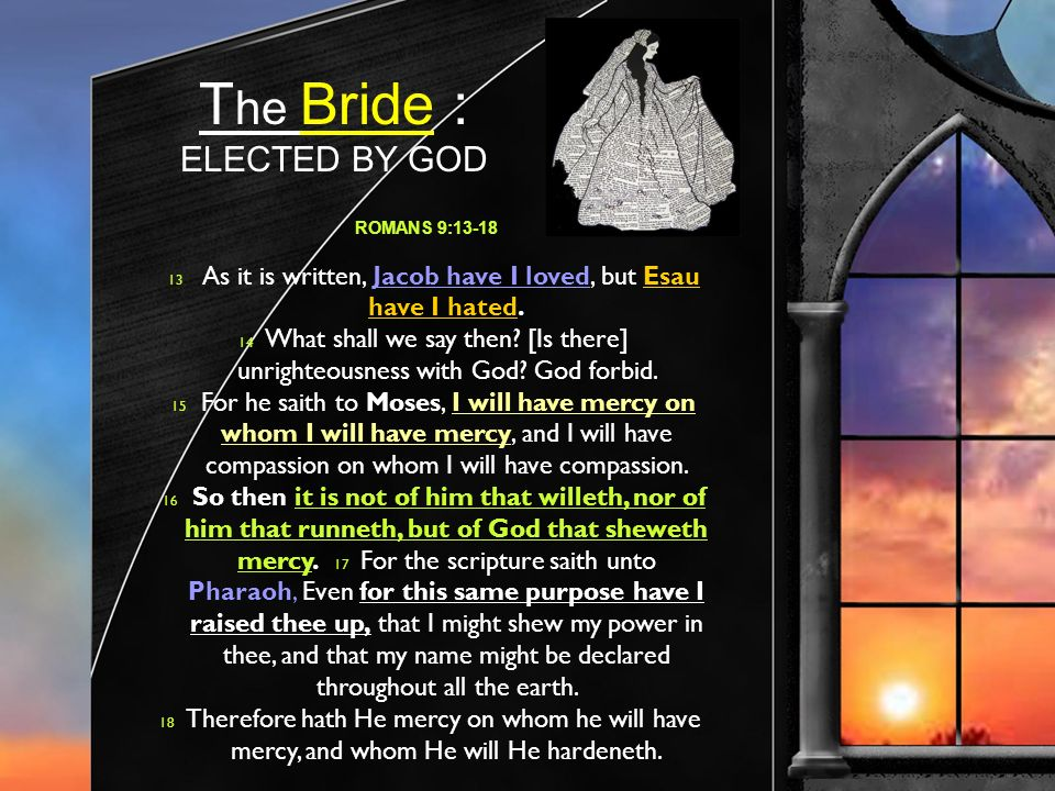 T he Bride : ELECTED BY GOD ROMANS 9:13-18 13 As it is written, Jacob have I loved, but Esau have I hated.
