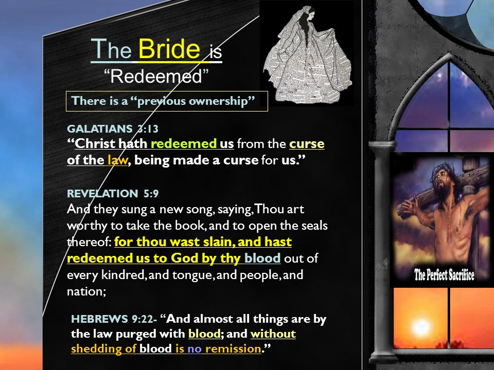 T he Bride is Redeemed GALATIANS 3:13Christ hath redeemed us from the curse of the law, being made a curse for us.