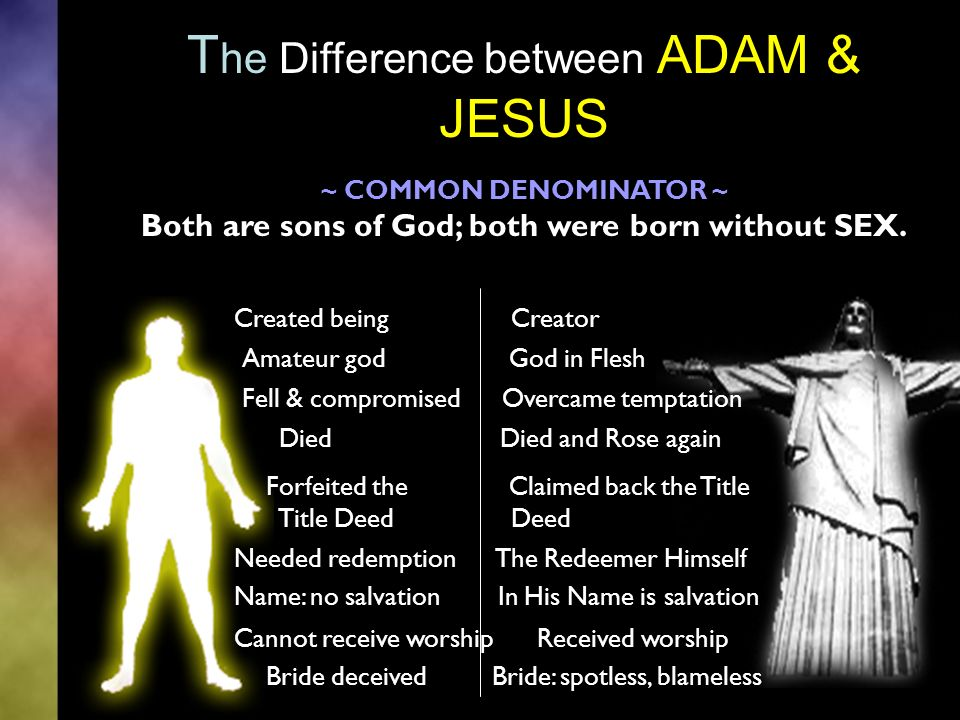 T he Difference between ADAM & JESUS ~ COMMON DENOMINATOR ~ Both are sons of God; both were born without SEX.
