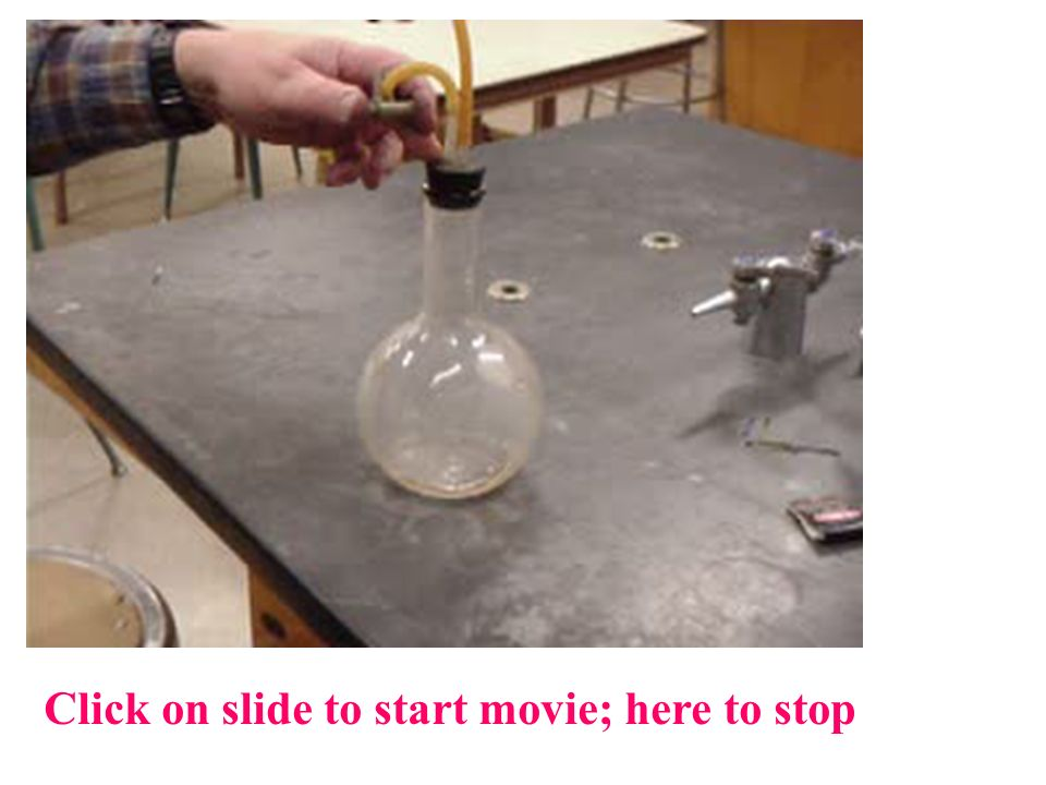 Click on slide to start movie; here to stop