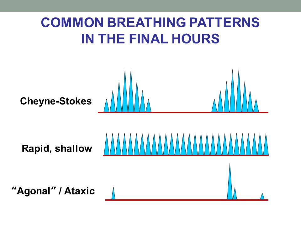 COMMON BREATHING PATTERNS IN THE FINAL HOURS Cheyne-Stokes Rapid, shallow Agonal / Ataxic