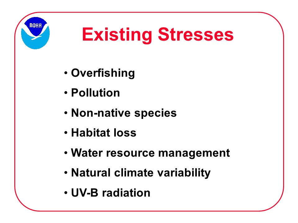 Existing Stresses Overfishing Pollution Non-native species Habitat loss Water resource management Natural climate variability UV-B radiation