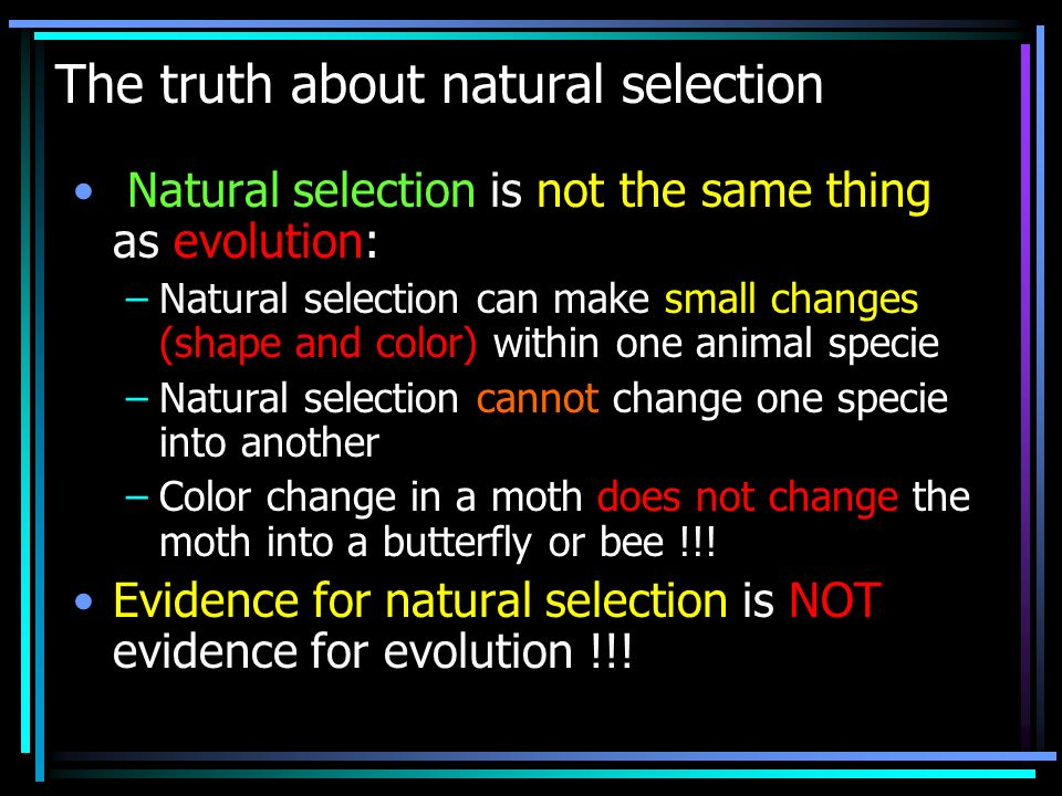 The truth about natural selection Natural selection is not the same thing as evolution: –Natural selection can make small changes (shape and color) within one animal specie –Natural selection cannot change one specie into another –Color change in a moth does not change the moth into a butterfly or bee !!.