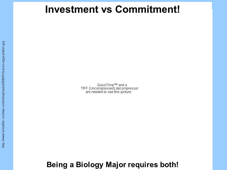 http://2.bp.blogspot.com/_DTNsBjoxilQ/RsUgeQq5uSI/AAAAAAA AAGU/WNn5Rs0dQ2Q/s400/commitment3.JPG Investment vs Commitment!