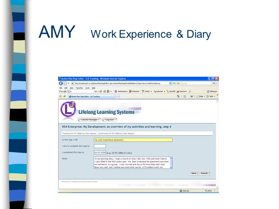 AMY Work Experience & Diary