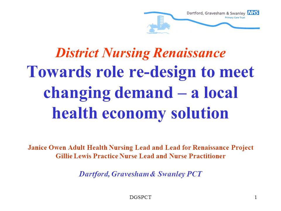 DGSPCT1 District Nursing Renaissance Towards role re-design to meet changing demand – a local health economy solution Janice Owen Adult Health Nursing Lead and Lead for Renaissance Project Gillie Lewis Practice Nurse Lead and Nurse Practitioner Dartford, Gravesham & Swanley PCT